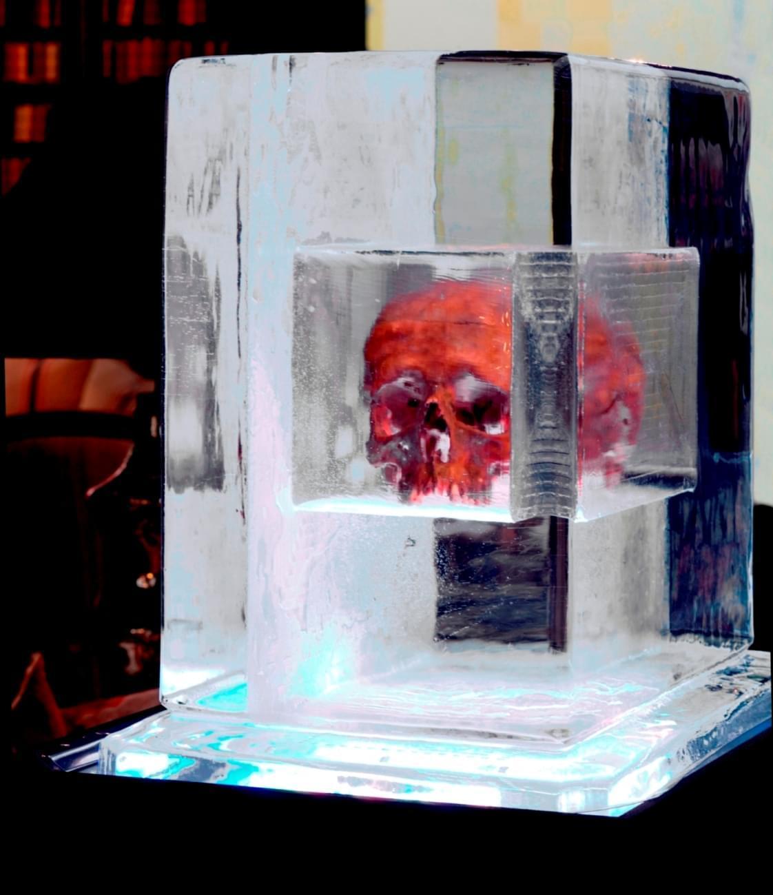 Skull in ice