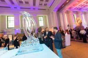Penguin, Ice awards