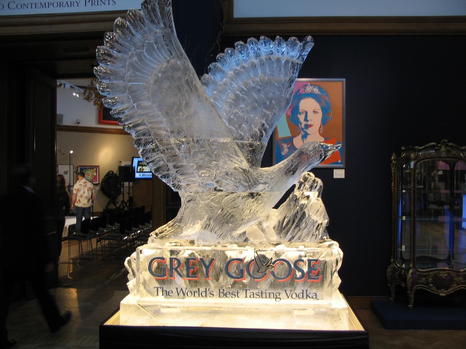 Grey, Goose, Wings