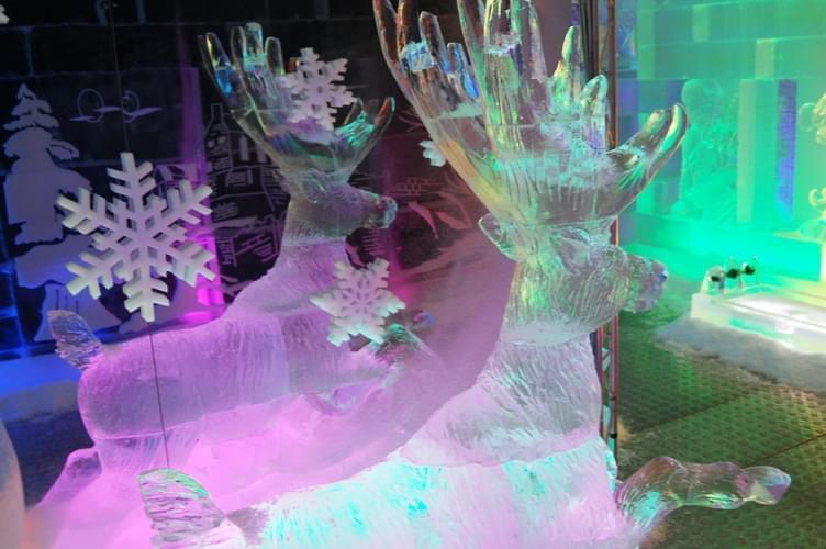 Deer, Gallery, Snowflakes