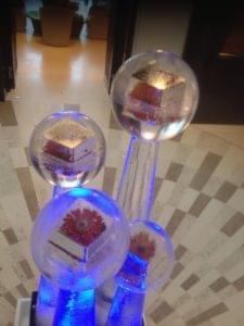 Sphere, Flowers, Frozen