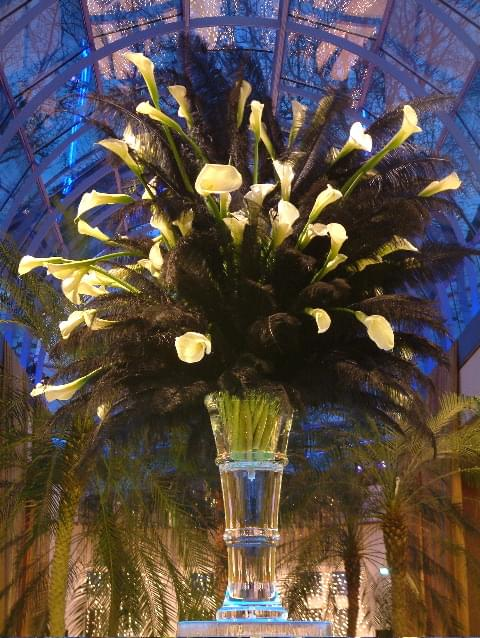 Frozen, Vase, Product launch, Flowers