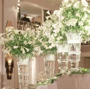 Flowers, Vase, Product launch