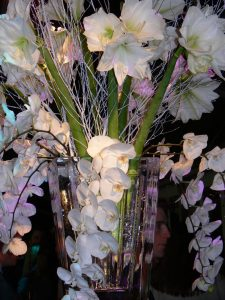 Orchid display in ice
