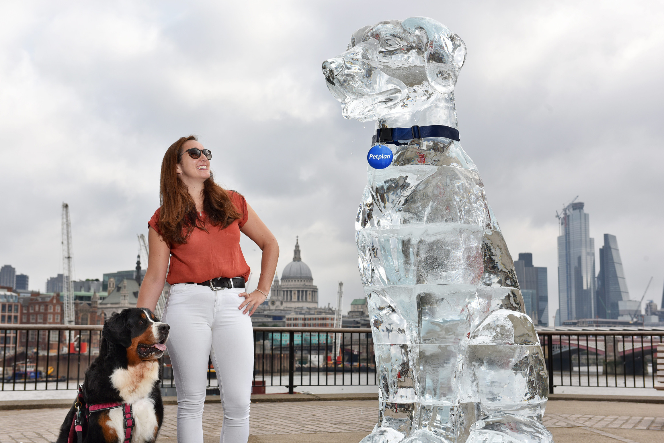 Ice Dog Ice Sculpture - Pet Plan UK - Southbank